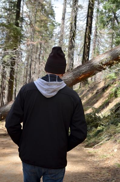 Sequoias3